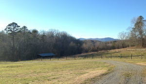Prime Site - 26 acres with outbuildings