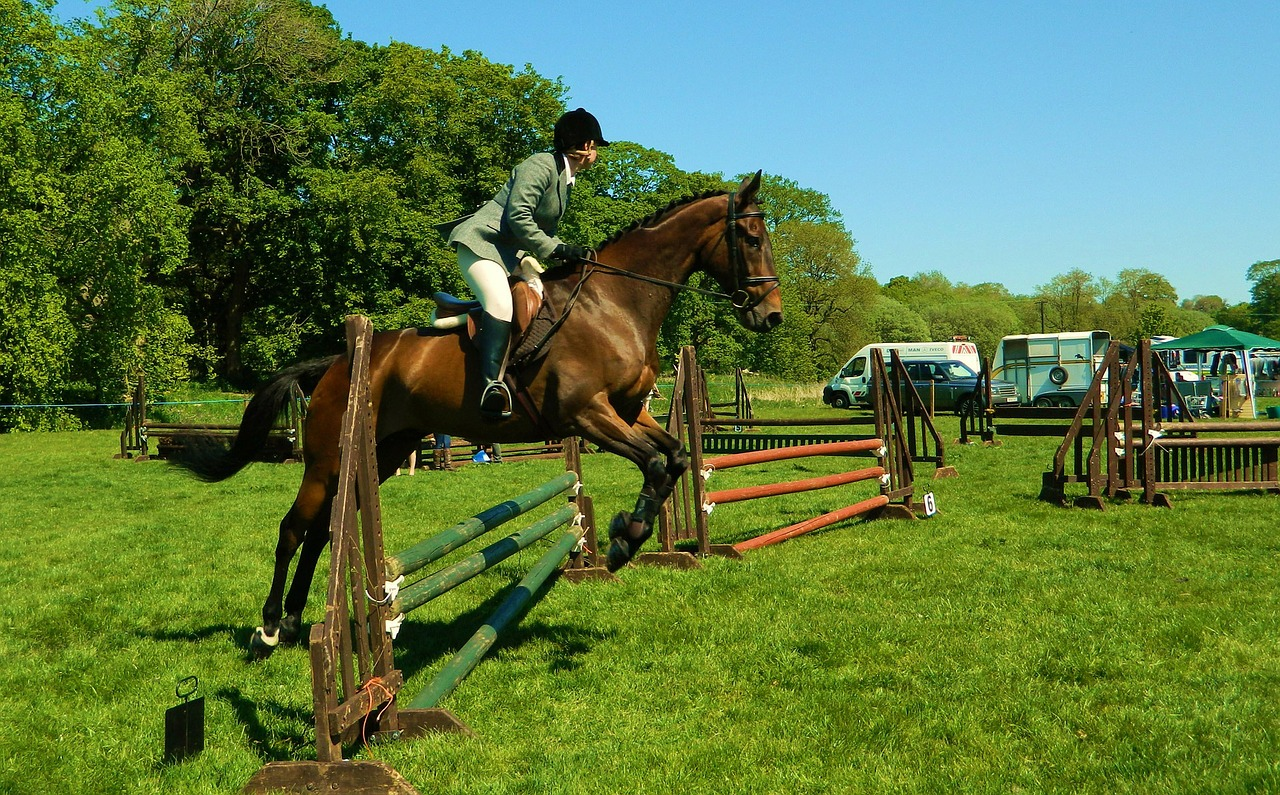 cross country horse riding