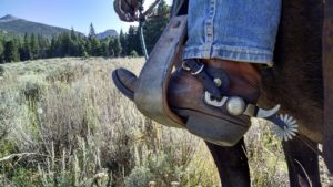 Boot in a horse saddle foothold.