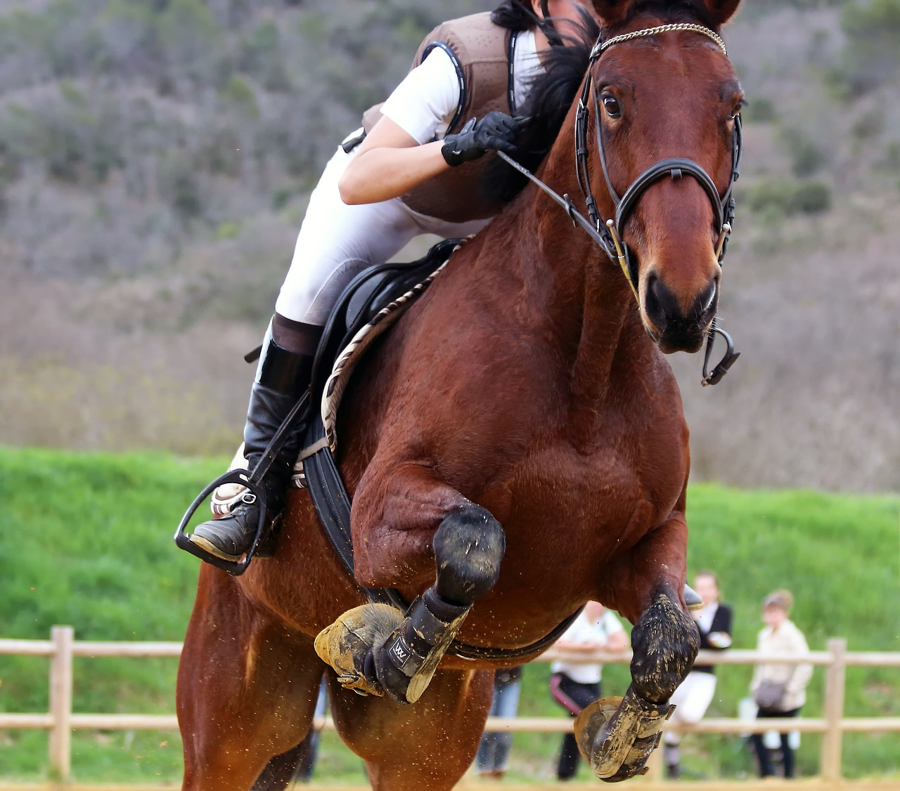 Woman competitively racing a horse.