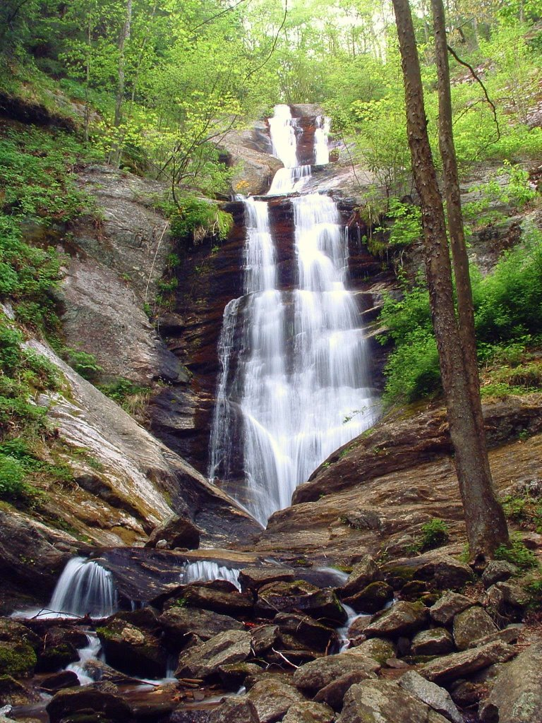 Toms Creek Falls.