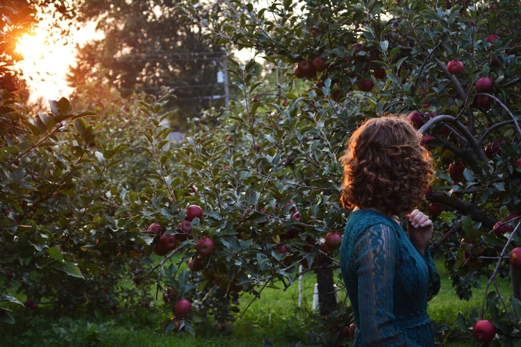 A woman in an apple orchard.